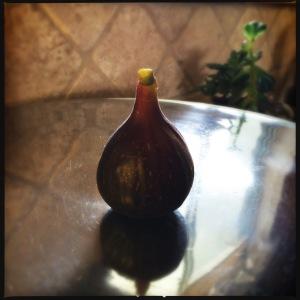 Fig Hash 1