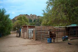 Rancho Providencia 23