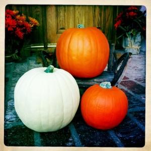 Cut the Gourd 1