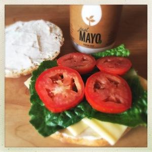The Mayo Cynic 2