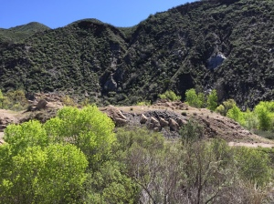 St. Francis Dam 1
