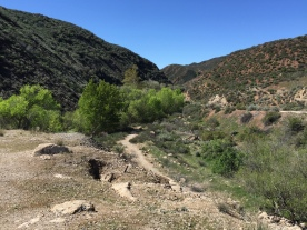 Looking south down San Francisquito Canyon at the path the floodwaters took after the collapse of the dam.