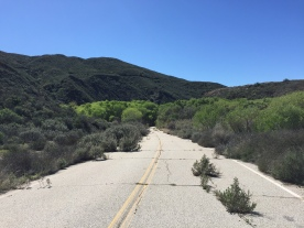 The abandoned road heading southeast toward the former site of the St. Francis Dam.