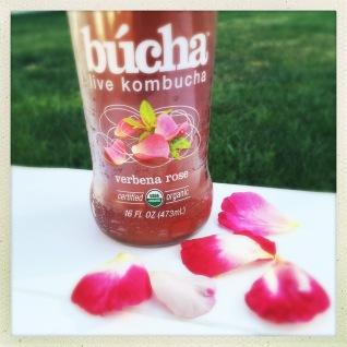 búcha Verbena Rose Kombucha